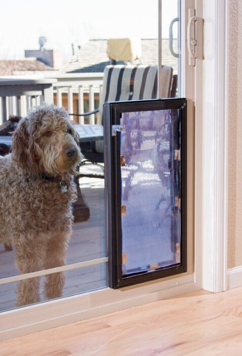pet patio doors pet door replacement