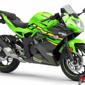 Kawasaki Ninja 125 Green