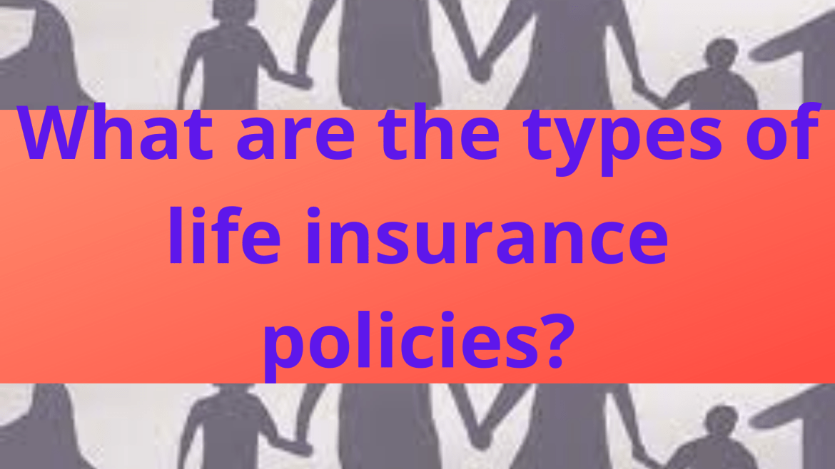 What are the types of life insurance policies?