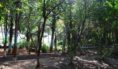 Deshmukh Farm House And Agri Tourism