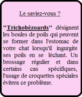 Etiquette Trichobézoards