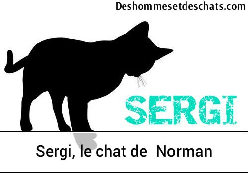 Norman Chat