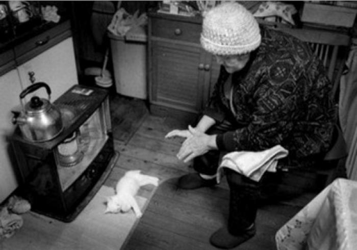 images marrantes petit chat photo belle petit chaton mignon photos chatons photos de chatons photo animaux image chat des hommes et des chatons image noir et blanc photo noir et blanc photographie noir et blanc photo noir blanc image en noir et blanc portrait noir et blanc (8)