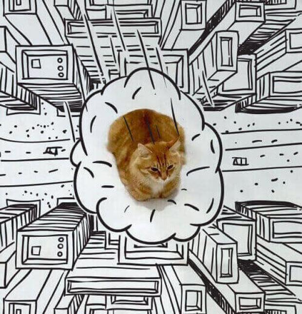 dessin-de-chat-dessin-chat-dessin-dessiner-un-chat-photo-de-chat-marrant-images-chats-rigolos-photo-chat-rigolo-animaux-rigolo-chat-comique-image-drole-de-chat-chatons-rigolos