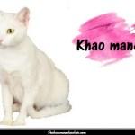 Le Khao Manee