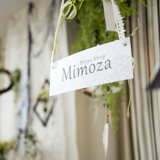 「Mimoza」 Client interview