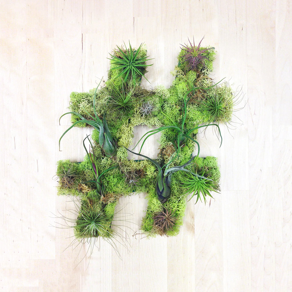 Unique Living Wall Plant Decor from Art We Heart - Design Milk on Wall Sconces For Greenery Decoration id=22150