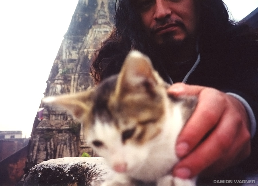 Proof John Doesn't Hate Cats India