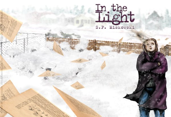 in the light Cover