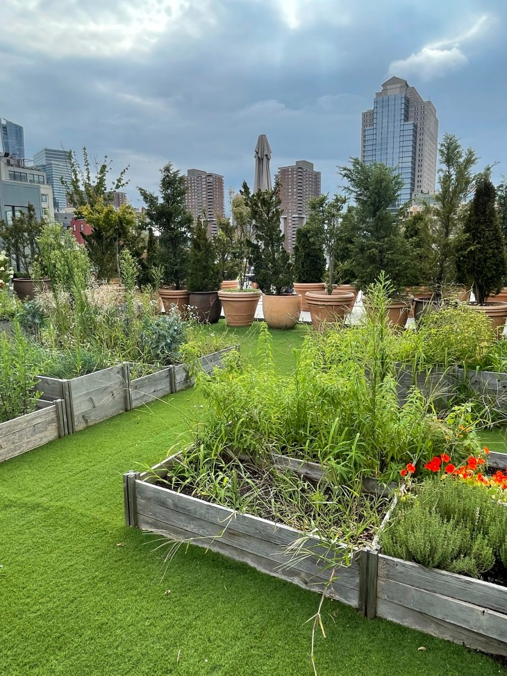 Design and Style Report image, Curve New York, Spring Studios rooftop garden