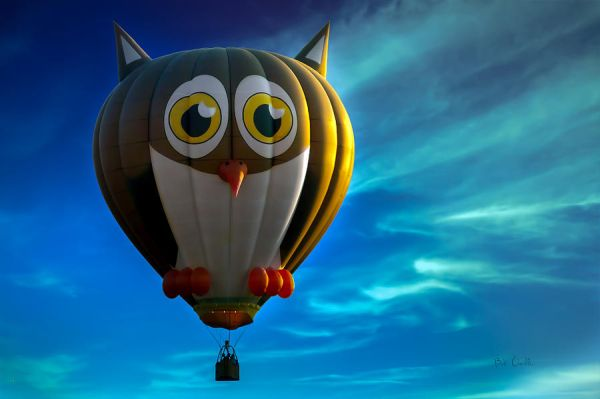 owl-hot-air-balloon-bob-orsillo