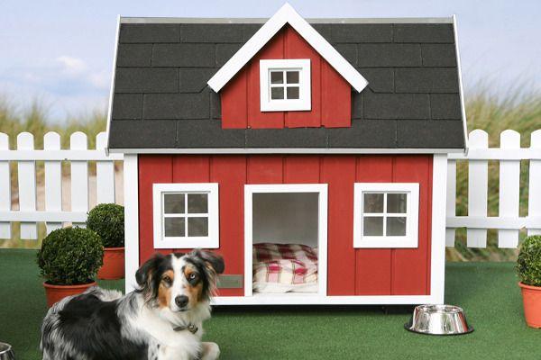 hundehaus-loenneberga_1