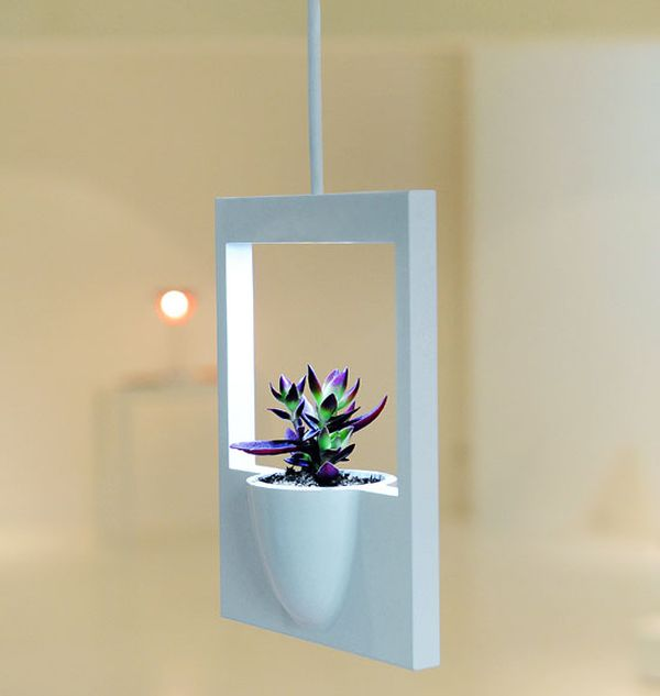 Polaroid Flower Vase