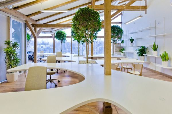 Office Greenhouse