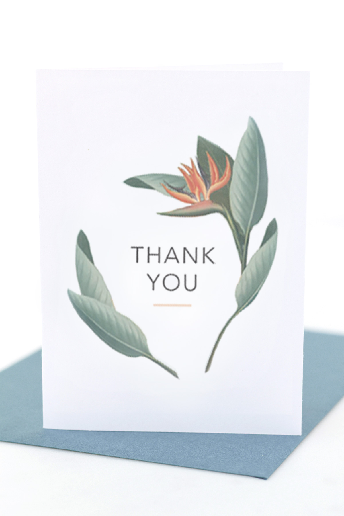 Free Printable Thank You Cards Tags