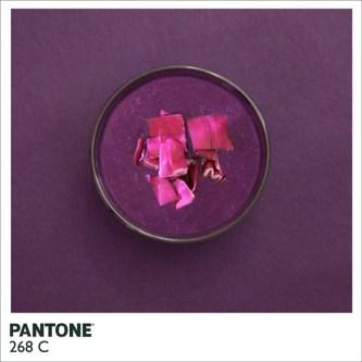 pantonefood-5
