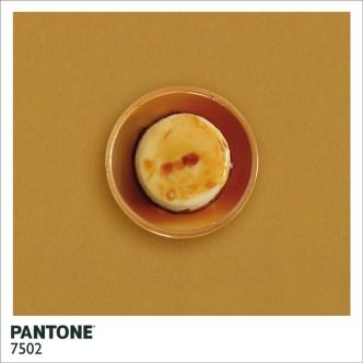 pantonefood-6