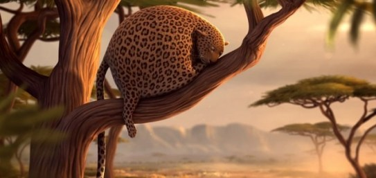 safari-5