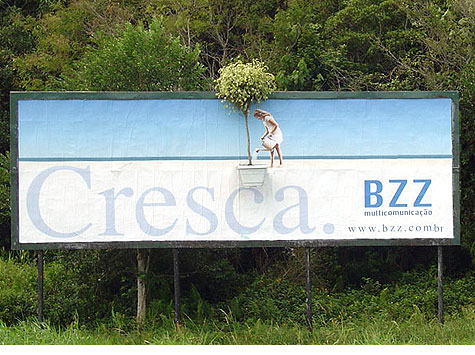 bzzcresca