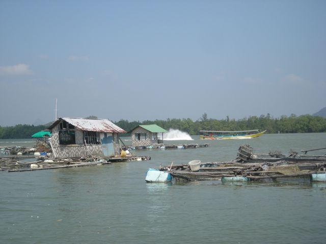 Village flottant, Ao Phang Nga