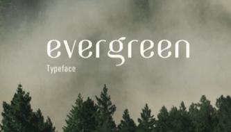 Свежая подборка лучших шрифтов для дизайнеров