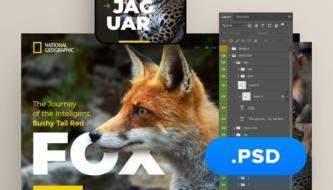 Большая коллекция бесплатных PSD шаблонов для веб-дизайна