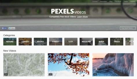 Pexels лицензионные видео