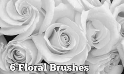 Действительно потрясающие цветочные фотошоп кисти