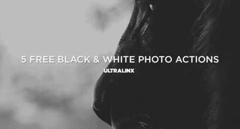 черно-белые эффекты фото бесплатно фотошоп действия