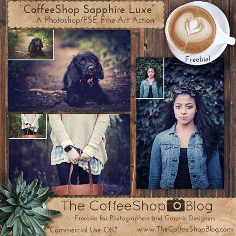 Saphire Luxe Photoshop Action