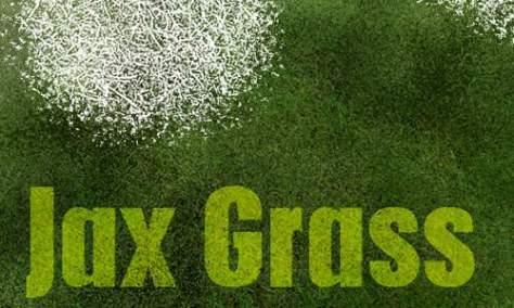 Действительно симпатичный набор кистей для фотошопа из травы