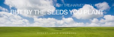 words-of-wisdom-the-seeds-you-plant