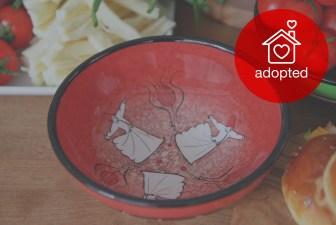 1515-hand-painted-iznik-bowl-adopted