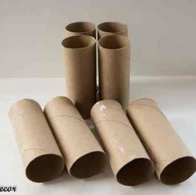 Starting Seedlings with Toilet Paper Rolls!