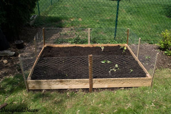 Building a raised garden bed-11