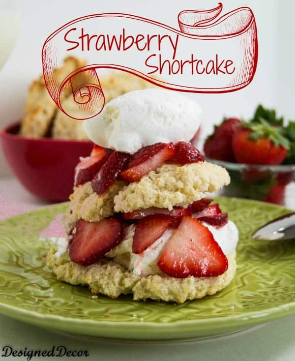 strawberry shortcake-