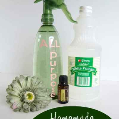 How to make All-Purpose Cleaner!