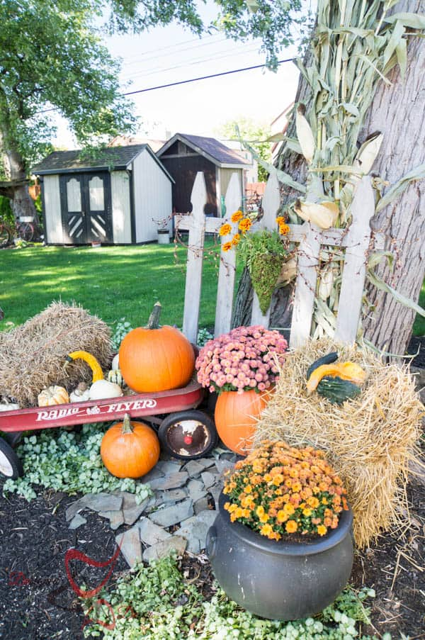 2014 Fall Home Decor-