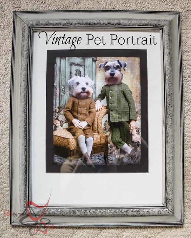 Vintage Pet Portrait -pinnable