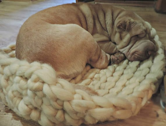 chunky dog bed