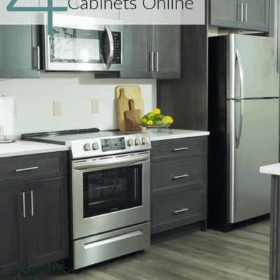 Buying Kitchen Cabinets online for the Guest Suite