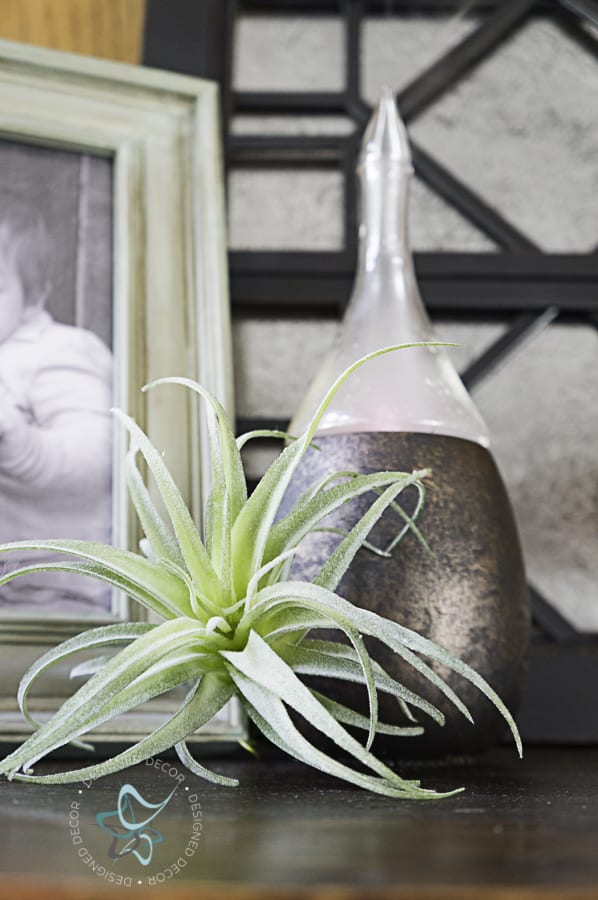 picture of a painted diffuser with an air plant sitting in front