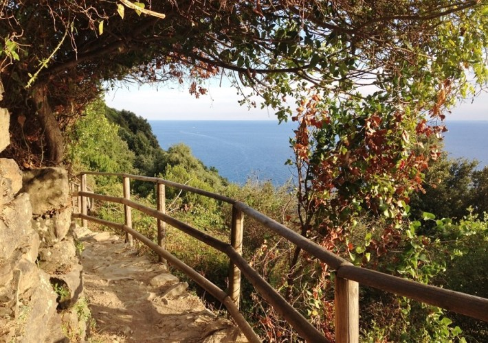 Trasee de hiking în Cinque Terre