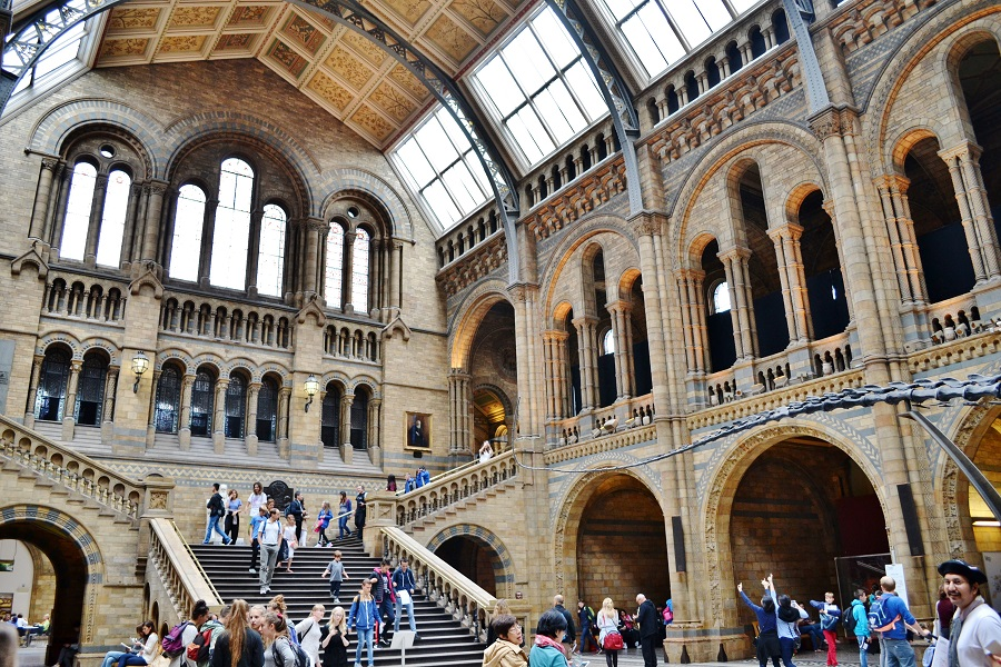 Londra - Natural History Museum