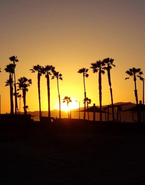 Citate de călătorie. Venice Beach