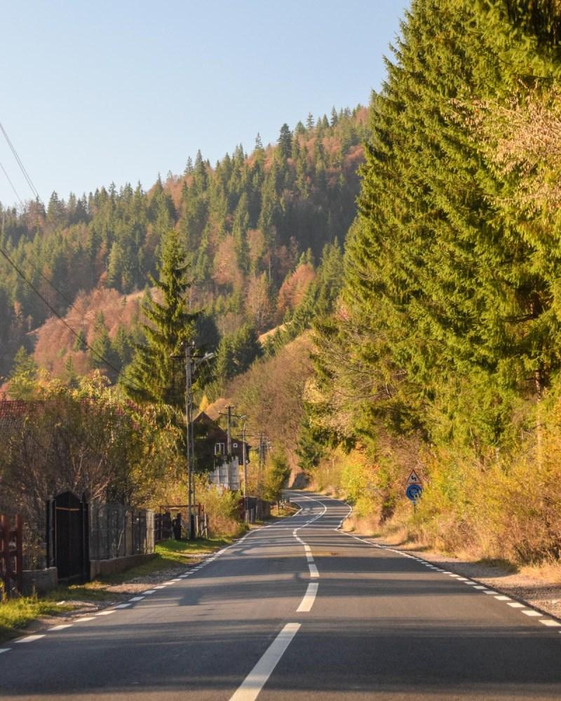 Drumuri prin Apuseni