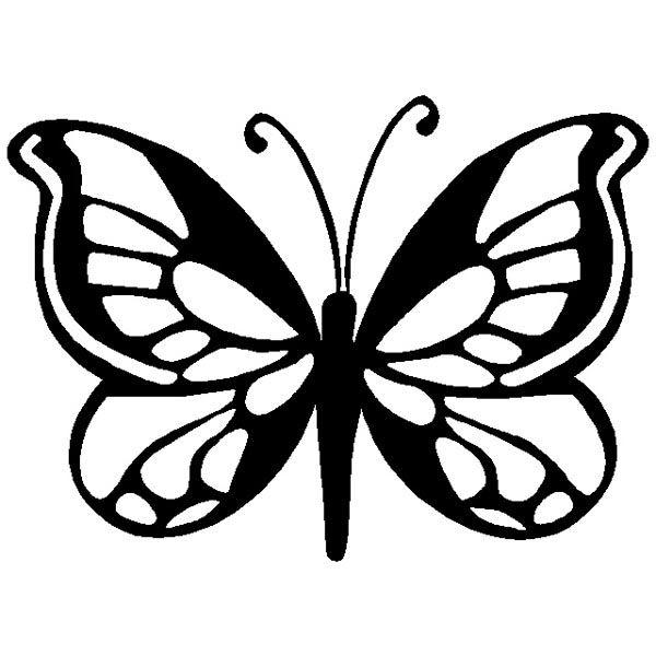 Butterfly kuvioita siivet