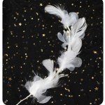 Long White Feather with Beads Topper (2)