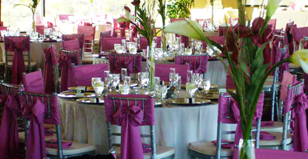 Chair cover hire kent designer chair covers to go home decorations chair cover hire kent wedding chair covers junglespirit Images