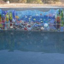"Fused Glass ""Reef"" Scene Set in Swimming Pool Wall"